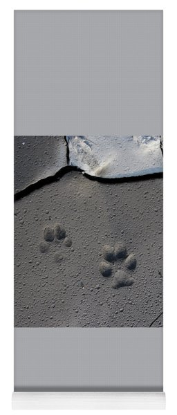Coyote Tracks Yoga Mat