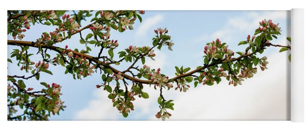 Crabapple Blossoms  Yoga Mat