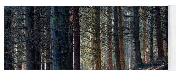 Yoga Mat featuring the photograph Craig Dunain - Forest In Winter Light by Karen Van Der Zijden