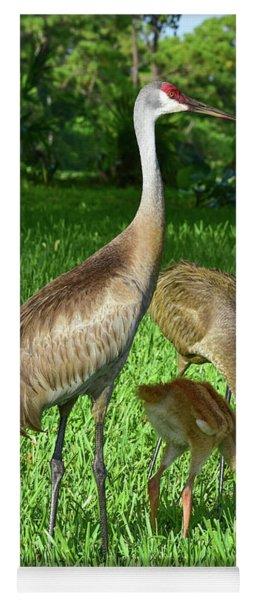 Crane Family Picnic Yoga Mat