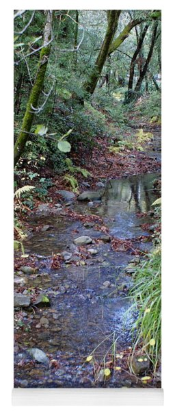 Creek On Mt Tamalpais 2 Yoga Mat