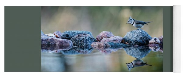 Crested Tit's Reflection Yoga Mat