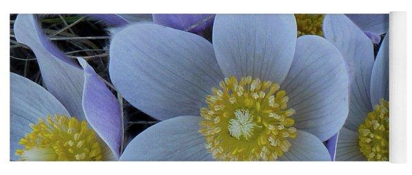 Crocus Blossoms Yoga Mat