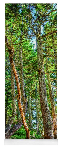 Crooked Trees Of Mt Roberts Yoga Mat