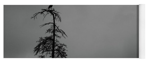 Crow Perched On Tree Top - Black And White Yoga Mat