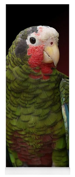 Cuban Amazon Parrot Yoga Mat