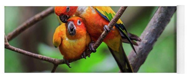 Cuddling Parrots Yoga Mat