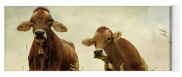 Curious Cows Yoga Mat