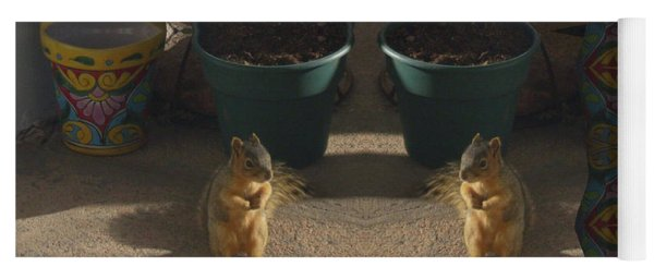 Cute Baby Squirrels On The Porch Yoga Mat