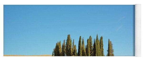 Cypress Trees Yoga Mat