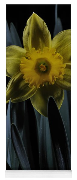 Daffodil By Moonlight Yoga Mat