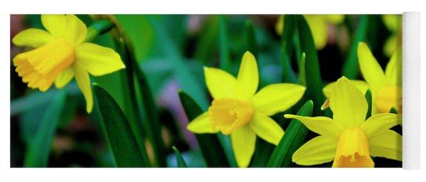 Daffodils A Symbol Of Spring Yoga Mat