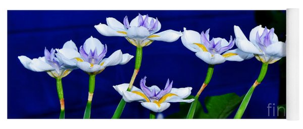 Dainty White Irises All In A Row Yoga Mat