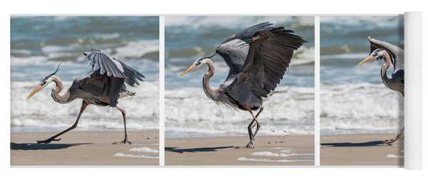 Yoga Mat featuring the photograph Dancing Heron Triptych by Patti Deters