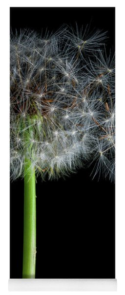 Yoga Mat featuring the photograph Dandelion 3 by James Sage