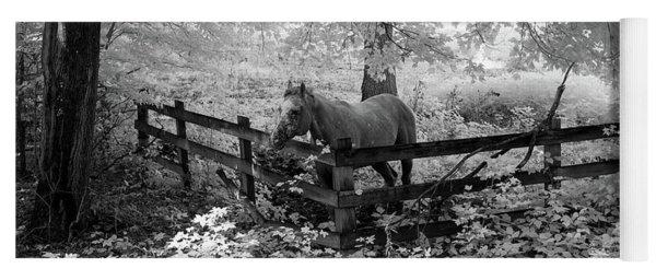 Dapple Faced Horse I Yoga Mat