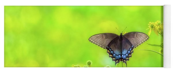 Yoga Mat featuring the photograph Dark Morph Female Tiger Swallowtail Butterfly by Lori Coleman