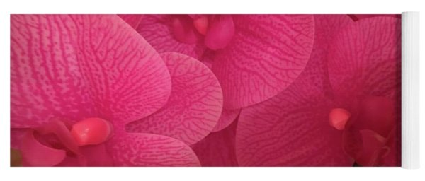 Dark Pink Orchids Yoga Mat