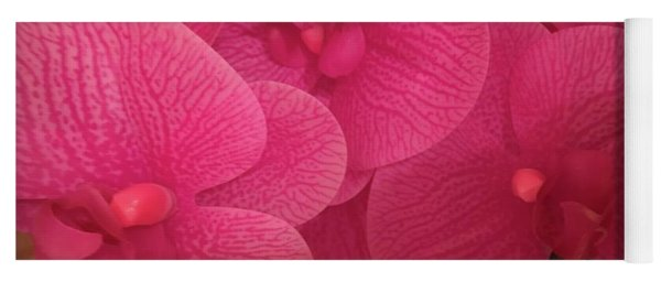 Dark Pink Orchids Yoga Mat