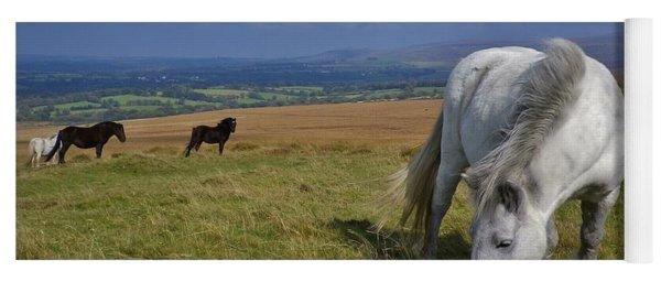 Dartmoor Ponies On Gibbet Hill Dartmoor Devon Yoga Mat