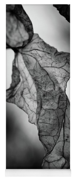 Fragile Leaf Bw Yoga Mat