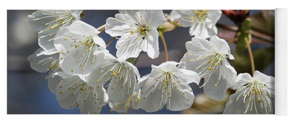 Deep Blue  Cherry Blossom Yoga Mat