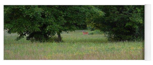 Deer In A Meadow At Dawn Yoga Mat