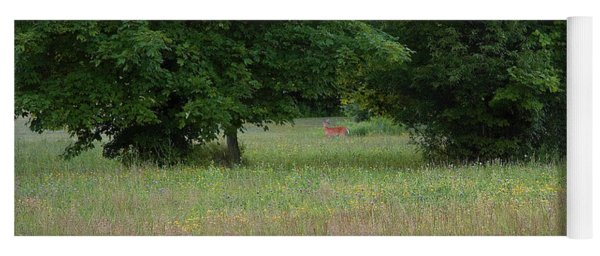 Deer In A Meadow At Dawn Yoga Mat