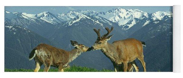 Ma-181-deer In Love  Yoga Mat