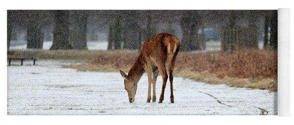 Deer In Snow Yoga Mat