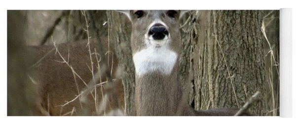 Deer In The Forest Yoga Mat