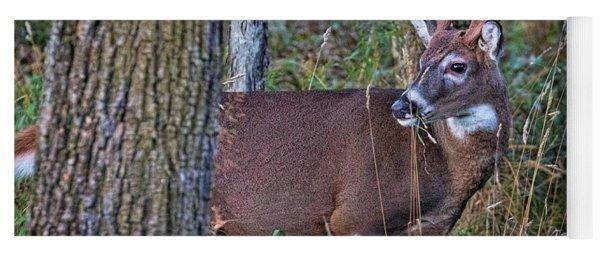 Deer In The Woods Yoga Mat