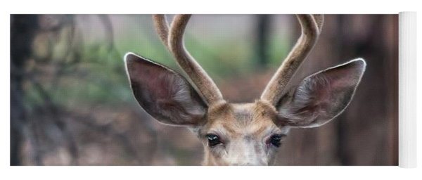Deer Stare Yoga Mat