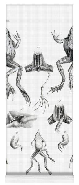 Deformed Frogs Yoga Mat