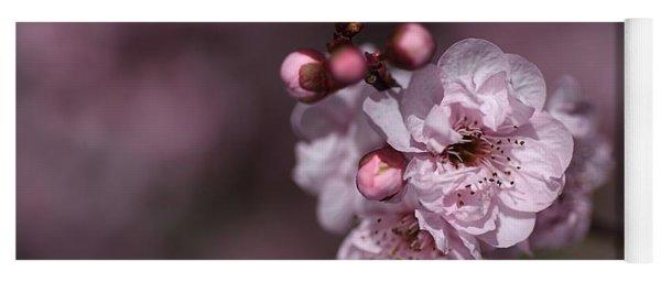 Delightful Pink Prunus Flowers Yoga Mat