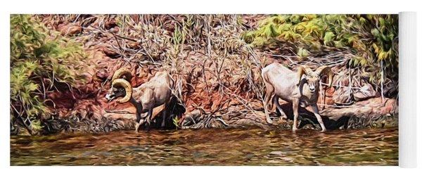 Desert Bighorn Sheep - Lake Havasu Yoga Mat