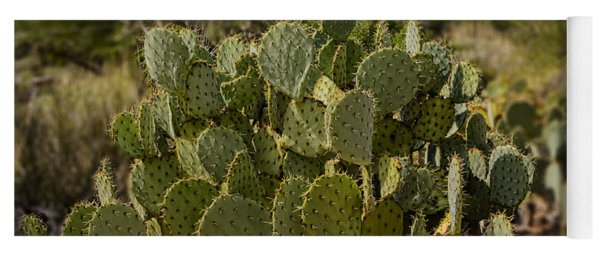 Desert Prickly-pear No6 Yoga Mat