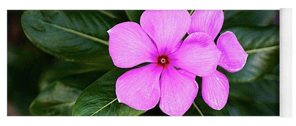 Desert Rose Asian Flower Yoga Mat