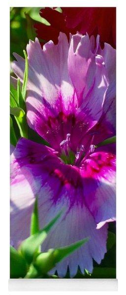 Dianthus Carnation Yoga Mat