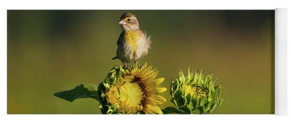 Dickcissel Sunflower Yoga Mat