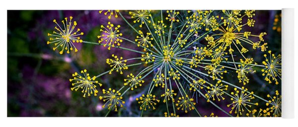 Dill Going To Seed Yoga Mat