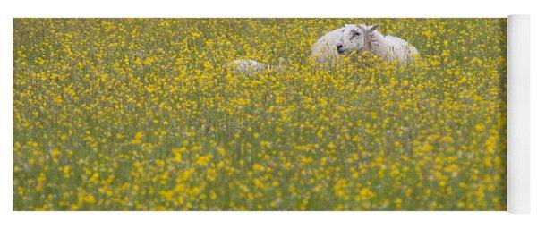 Do Ewe Like Buttercups? Yoga Mat