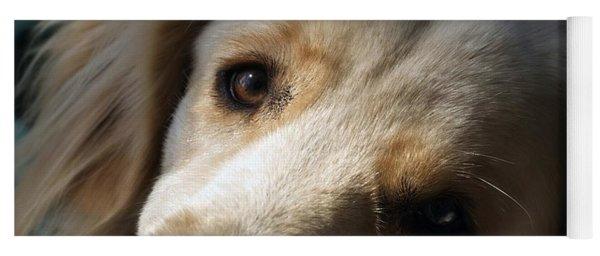 Dog Eyes Yoga Mat