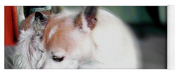 Dog Love Art 4 Yoga Mat