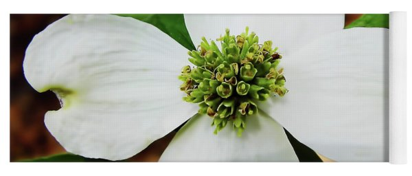 Dogwood Blossom Yoga Mat