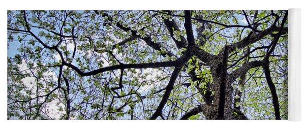 Dogwood Canopy Yoga Mat