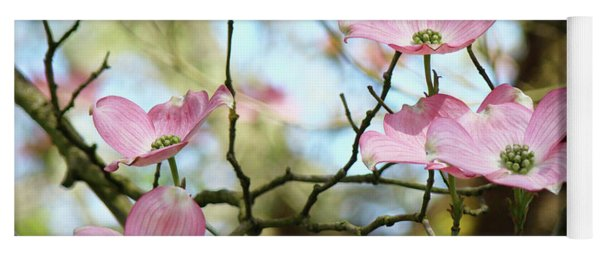 Dogwood Flowers Pink Dogwood Tree Landscape 9 Giclee Art Prints Baslee Troutman Yoga Mat