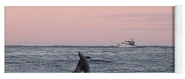 Dolphins At Play Yoga Mat