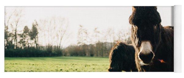 Donkey And Pony Yoga Mat