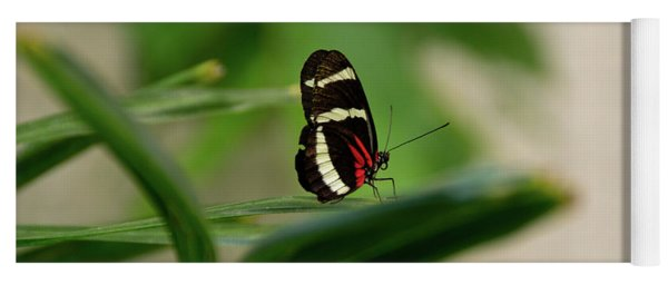 Doris Longwing Butterfly Yoga Mat
